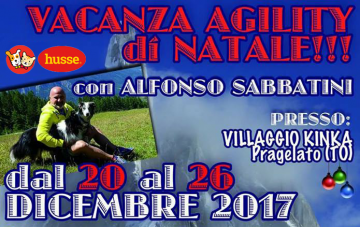 Vacanza Agility Natalizia